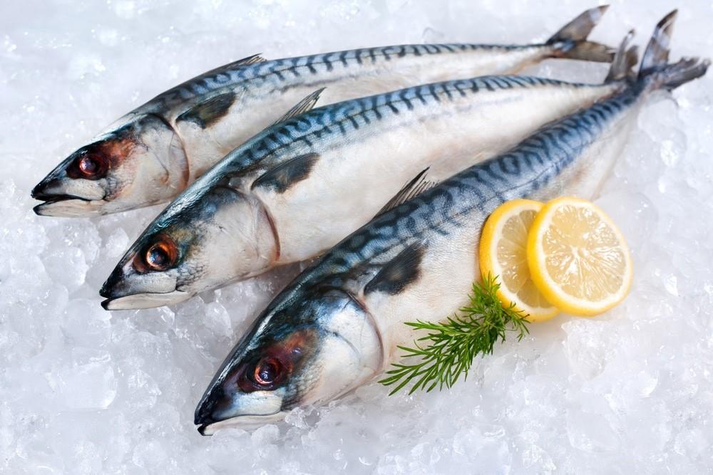 7 видов рыб, которые лучше не употреблять в пищу