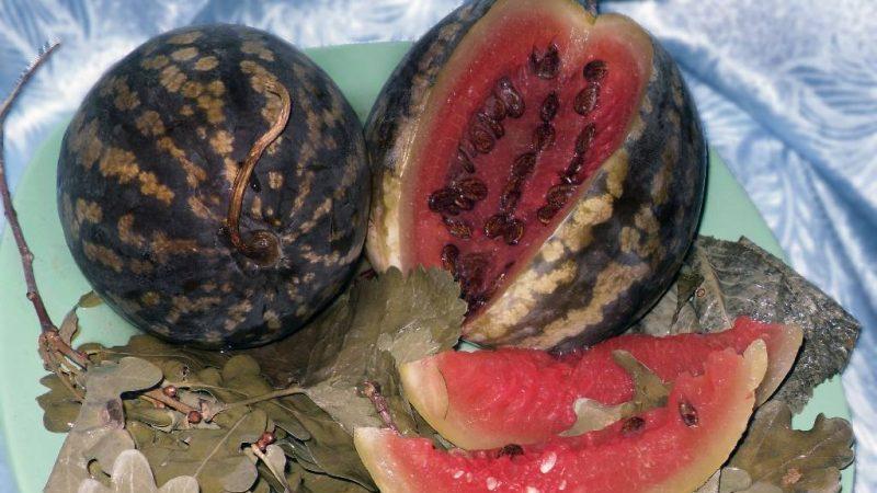 Вкусные рецепты моченых арбузов: в кастрюле, банке и бочке